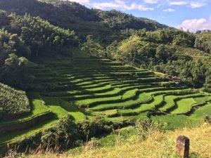 נוף וייטנאם
