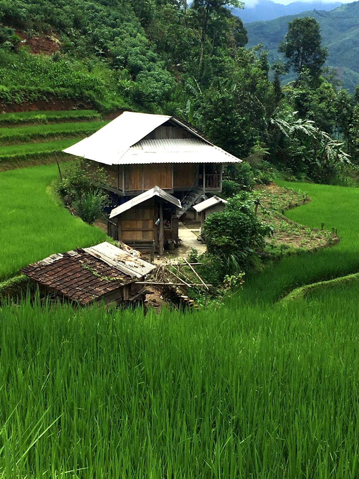 טיול מושלם בוייטנאם